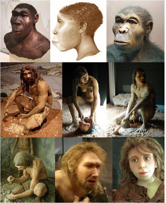 Homo_Models
