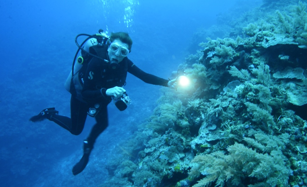 Sylvia Earle & Tierney Thys Seminar Primer — Blog of the ...