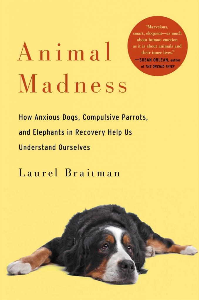 Animal Madness by Laurel Braitman