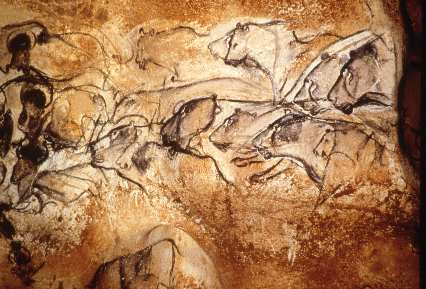 Paleolithic Cave Paintings Appear to be the Earliest Examples of Sequential Animation and Graphic Narrative